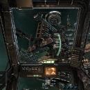Cockpitsicht